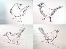 field sketching