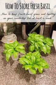 Herb Grower S Cheat Sheet 108 Best Vegetable Herb U0026 Fruit Garden Images On Pinterest