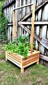50 best hydroponics images on pinterest hydroponics hydroponic