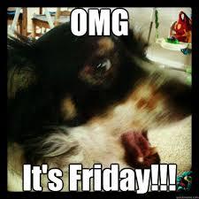 Rebecca Black Meme Generator - friday dog memes quickmeme