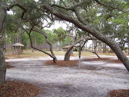 Florida State Parks Camping Map by Ochlockonee River State Park Accommodations Home Visit Wakulla