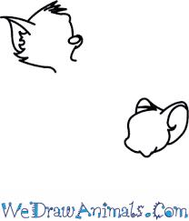draw tom jerry