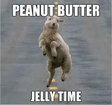 Peanut Butter Jelly Meme - peanut butter jelly time caption 3 goes here dancing sheep