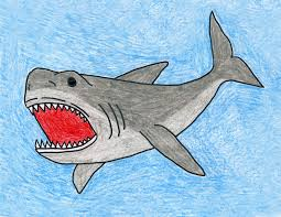 draw a megalodon shark art projects for kids