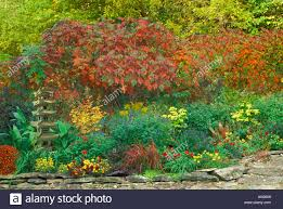 autumn flower garden with sumac trees and tall japanese lantern