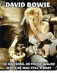David Bowie Labyrinth Meme - 25 best memes about bowie labyrinth meme bowie labyrinth memes