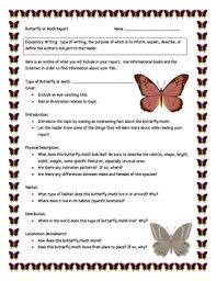 butterfly or moth informational report writing sheets 12 total pages