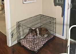 diy dog crate hack