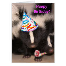 skunk greeting cards zazzle