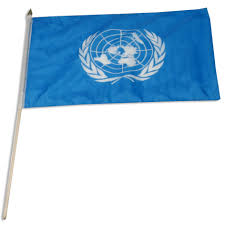 Flags Of Nations United Nations Flag 12 X 18 Inch