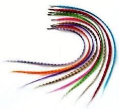 hair feathers hair feathers ebay
