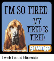 So Tired Meme - i m so tired my tired is tired tum facebookcomgrumpyoldgits backland