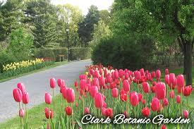 Clark Botanical Gardens Enchanting Gardens On Island Li Finds