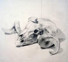 best 25 skull sketch ideas on pinterest skull illustration