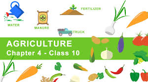 agriculture chapter 4 geography ncert class 10 youtube