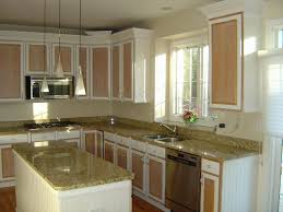 Replacing Kitchen Cabinets Cost Cost Of Replacing Kitchen Cabinets Beautiful Home Design Modern At