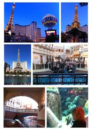 things to do around las vegas a toddler in las vegas free activities the intentional momma