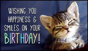 free birthday ecard cats saying happy birthday images birthday smiles birthdays ecard