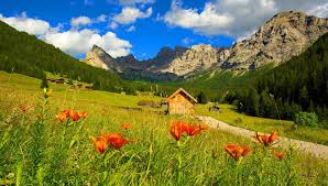 Beautiful Cottage Mountains Nature Delight Cabin Pretty Countryside Peaks Slope