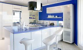 interior blue and white tile kitchen backsplash green grill range