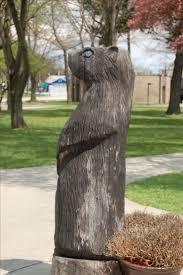 220 best groundhog day punxsutawney phil images on pinterest