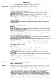 financial planning and analysis resume examples director business planning resume samples velvet jobs