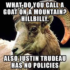 Billy Goat Meme - le new metacanada meme dyslexic billy goat comedian who also