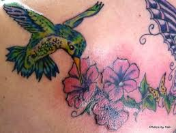 top 15 hummingbird designs and meanings styles at