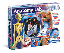 100 fetal pig lab guide vocabulary key chapter 14 digestion