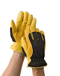 gold leaf winter touch gloves for men and women