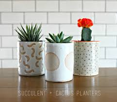 how to create a succulent planter
