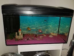 aquarium 1d554858 jpg