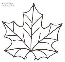 best 25 maple leaf template ideas on pinterest leaf coloring