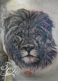 by teejay white tiger rochester ny