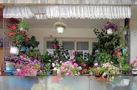 Small Balcony Garden Design Ideas 11 Small Apartment Balcony Ideas With Pictures Balcony Garden Web