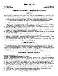 executive resume formats and exles executive resume format exles exles of resumes