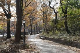 st nicholas park nyc parks