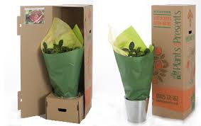 plant delivery we deliver quality plants as gifts across the uk
