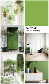 5 ways to work with pantone colour of the year burkatron