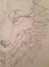 wolf face sketch by fuzzehzombehfox on deviantart