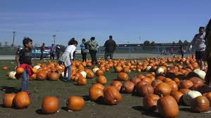 toronto oct 11 pumpkinfest at york s downsview park on