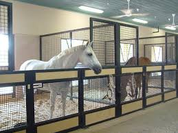 Best Horse Barn Designs Horse Barns And Stalls Horsebarn Horsebarns Horse Barn Open Air