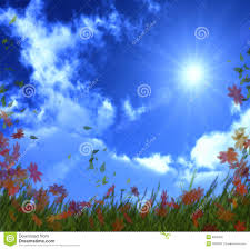 bright day stock photo image 9359430