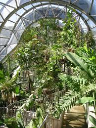 Botanic Garden Sydney File Royal Botanic Gardens Sydney 03 Jpg Wikimedia Commons