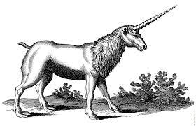 unicorn with mane monoceros seu unicornu jubatus