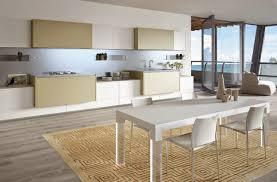 Flat Kitchen Design Kitchen Design In Flats Kitchen Design Ideas