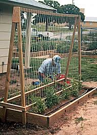 Raised Bed Gardening Raised Bed Garden Layouts Permanent Raised Bed Gardening