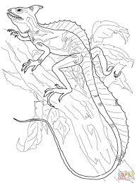komodo dragon coloring free printable coloring pages