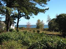 All Island Landscape by Cozy Exceptional View Quiet Comfortable Vrbo
