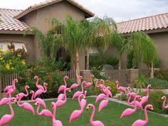 101 ways to fundraise yard flamingos flamingo and fundraising